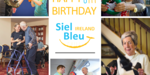 Siel Bleu Ireland, Physical Activity, Exercise for older adults, Exercise for seniors, exercise for senior citizens,
